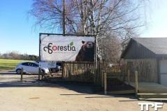 Forestia-1