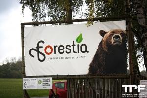 Forestia - oktober 2020