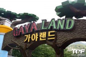 Gaya Land - juni 2019