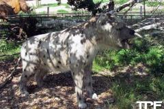 Givskud-zoo-(102)