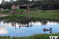 Givskud-zoo-(35)