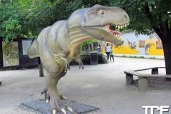 Givskud-zoo-(66)
