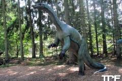Givskud-zoo-(71)