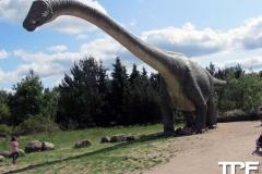 Givskud-zoo-(83)