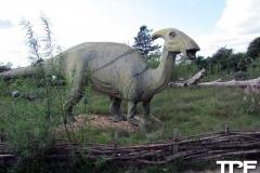 Givskud-zoo-(87)