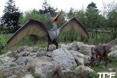 Givskud-zoo-(92)