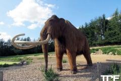 Givskud-zoo-(99)