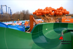 Waterpark-11