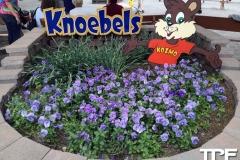 Knoebels--(28)