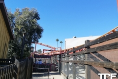 Knotts-Berry-Farm-124
