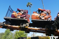 Knotts-Berry-Farm-131