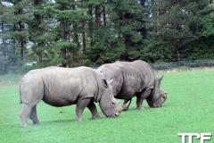 Knuthenborg-Safaripark-(98)