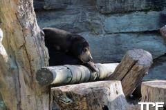 keulen-zoo-(12)