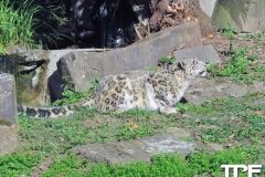 keulen-zoo-(23)