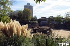 keulen-zoo-(42)
