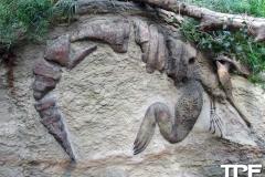 keulen-zoo-(54)