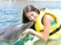 dolphin-encounter_1