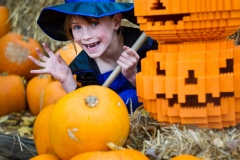 Brick or Treat at LEGOLAND Windsor Resort 7 (1)