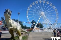 Lunapark-Krasnal-Darlowo-5