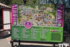 Magic-Park-Land-117
