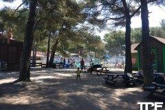 Magic-Park-Land-7