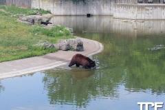Marineland-Theme-Park-23