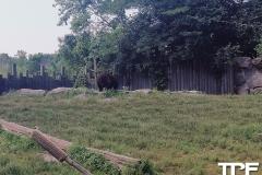 Marineland-Theme-Park-24