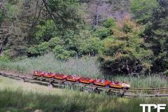 Marineland-Theme-Park-45