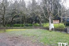 Oakwood-Theme-Park-39