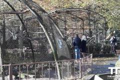 Olmense-zoo-(27)