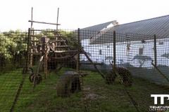 Olmense-zoo-(3)
