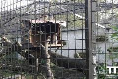 Olmense-zoo-(44)
