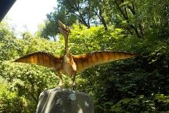 800px-Pteranodonte_di_Pangea