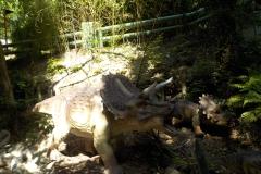 Triceratopi_di_Pangea