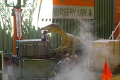 Velociraptor_di_Pangea_02