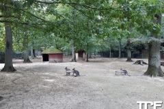 Parc-Merveilleux-45