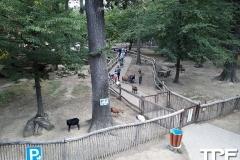 Parc-Merveilleux-63