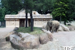 Parco-Faunistico-le-Cornelle-31