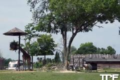 Parco-Natura-Viva-10