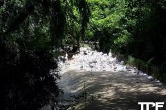 Parco-Natura-Viva-15