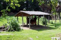 Parco-Natura-Viva-25