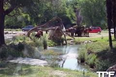 Parco-Natura-Viva-3