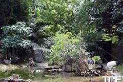 Parco-Natura-Viva-32