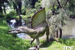 Parco-Natura-Viva-47