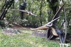 Parco-Natura-Viva-48