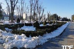 Parcul-Lacul-Tei-3