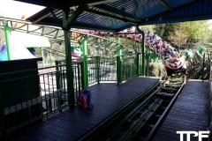 Paultons-Park-36