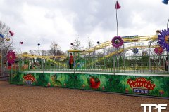 Pettitts-Animal-Adventure-Park-9