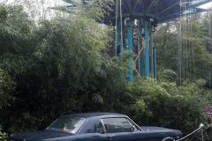 Cars (11)