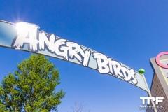 9-AngryBirds-1